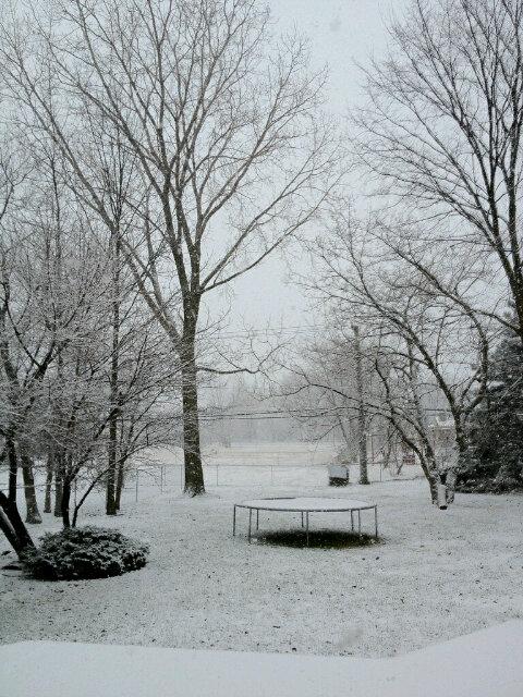 Trampoline-in-the-Winter