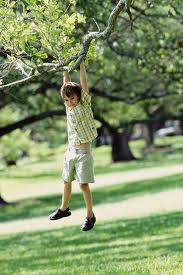 Children Learn Outdoors